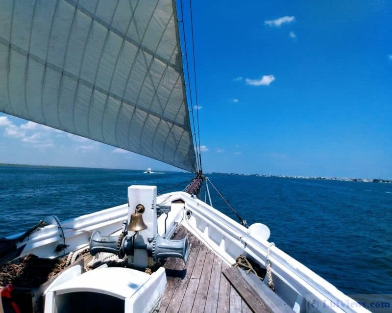 Bow of the A.J. Meerwald under sail. Little Egg Harbor, NJ
