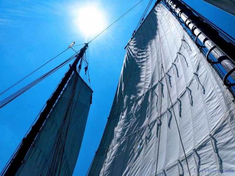 A.J. Meerwald under sail